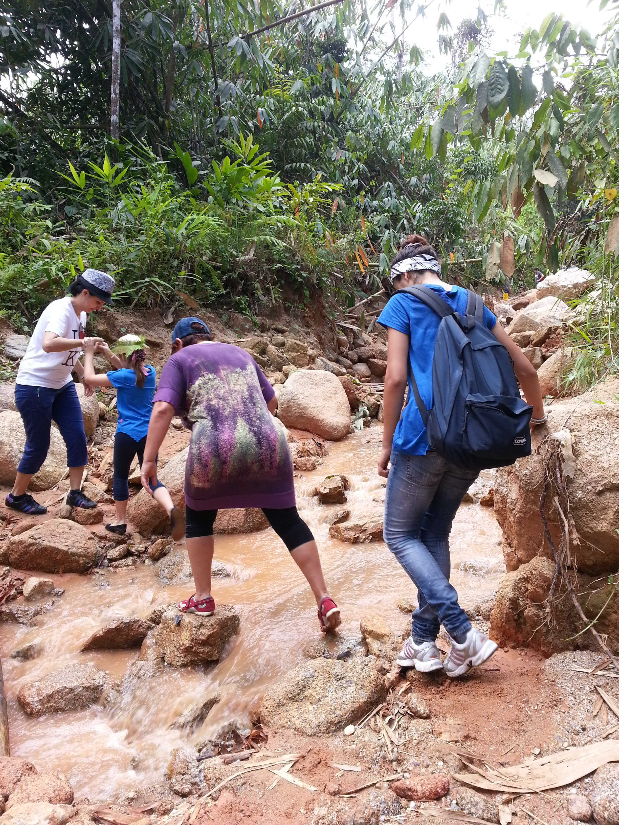 rafflesia expedition in Gunung Tangga