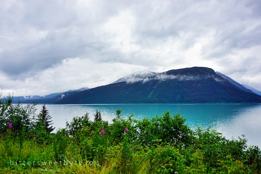 Road to Seward Scenic Drive 31