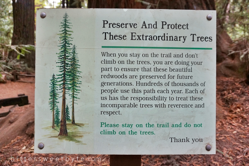 Redwood Park California 32