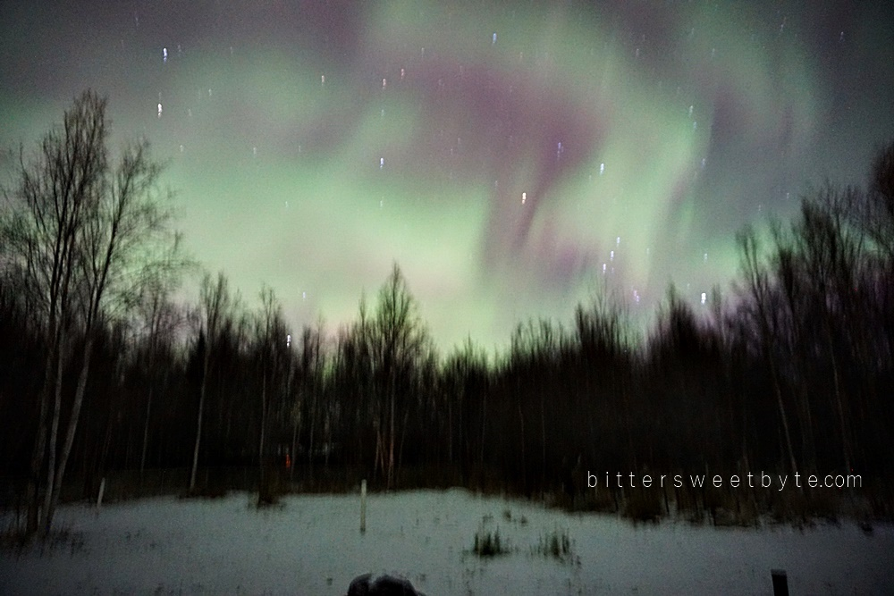 my first northern lights 1