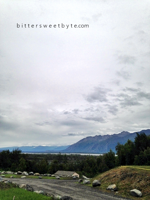 Knik River Road Alaska028