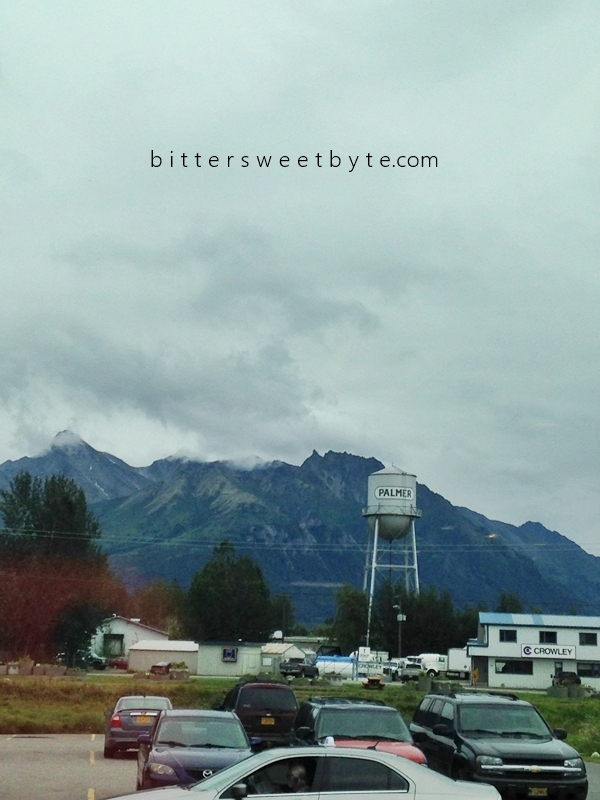 Afternoon in Palmer, Alaska021