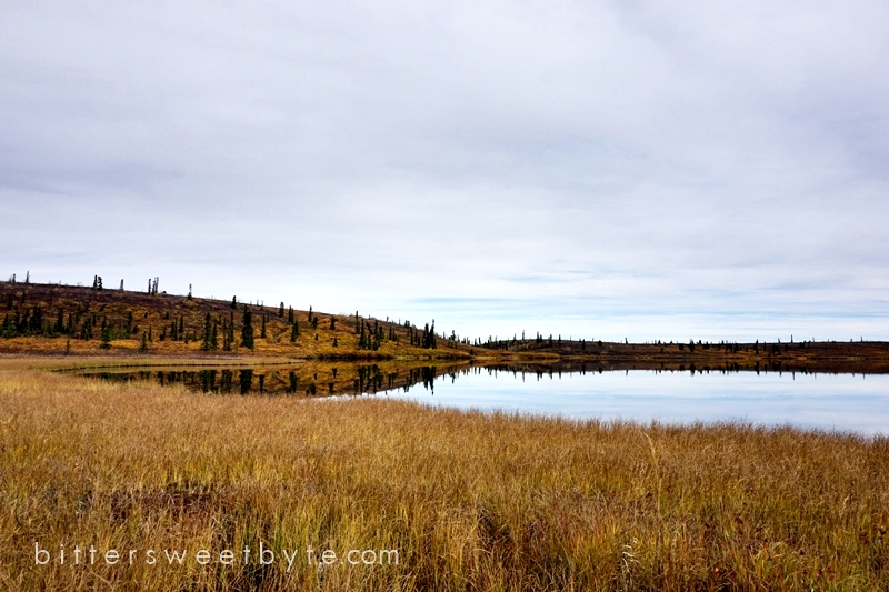 autum-in-alaska-19