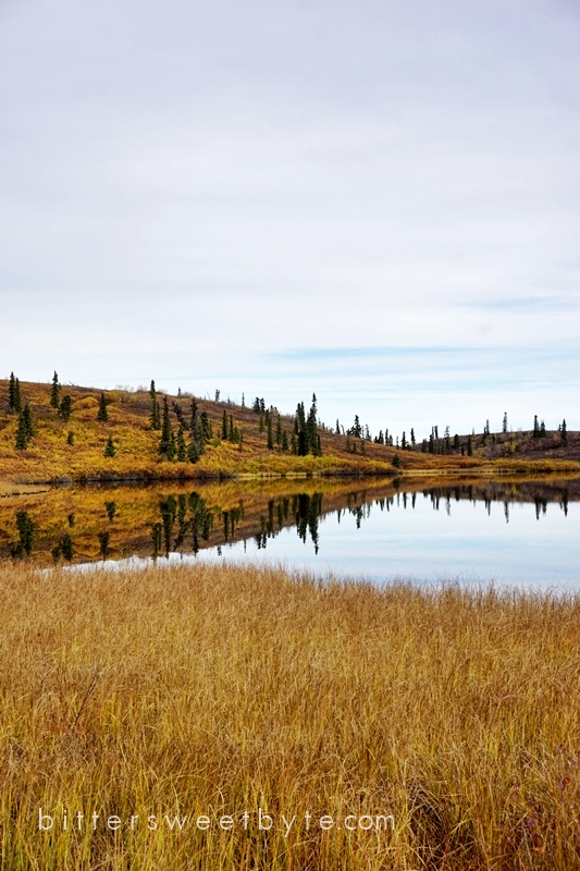 autum-in-alaska-21