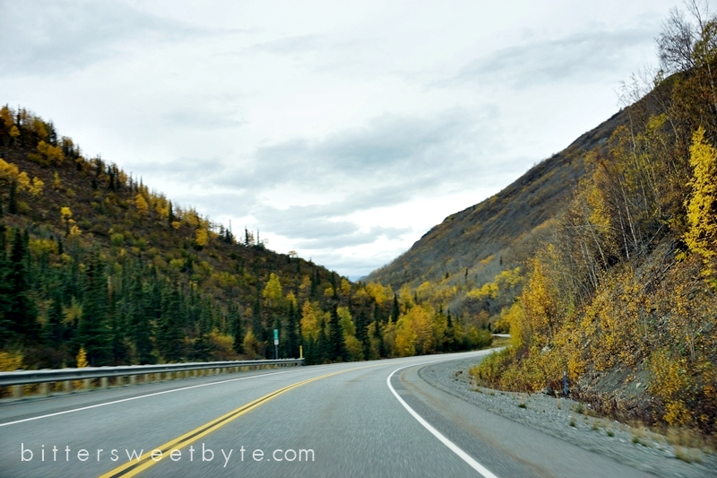 autum-in-alaska-23
