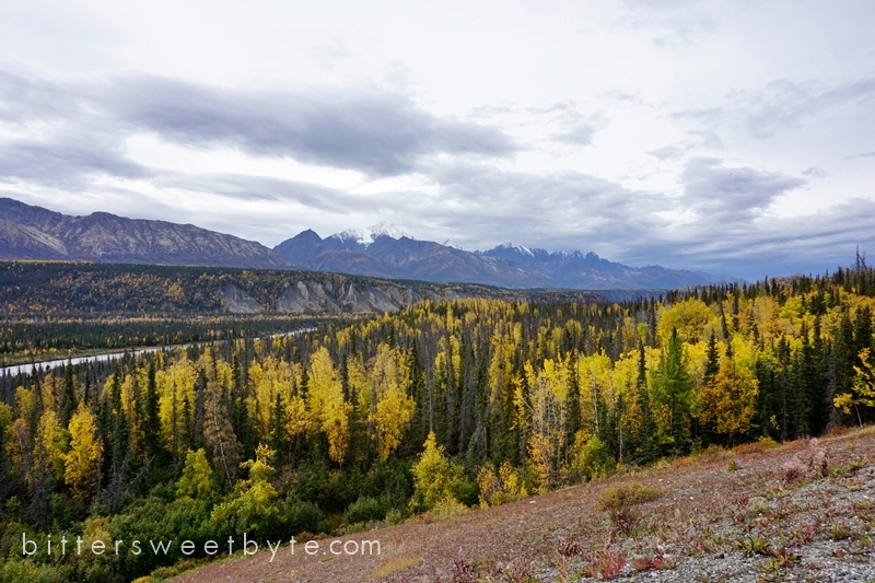 autum-in-alaska-24