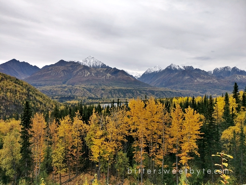 autum-in-alaska-36