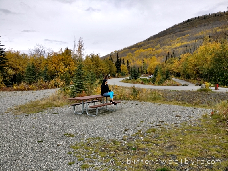 autum-in-alaska-39