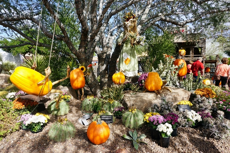 carefree-the-enchanted-town-arizona-halloween-edition018