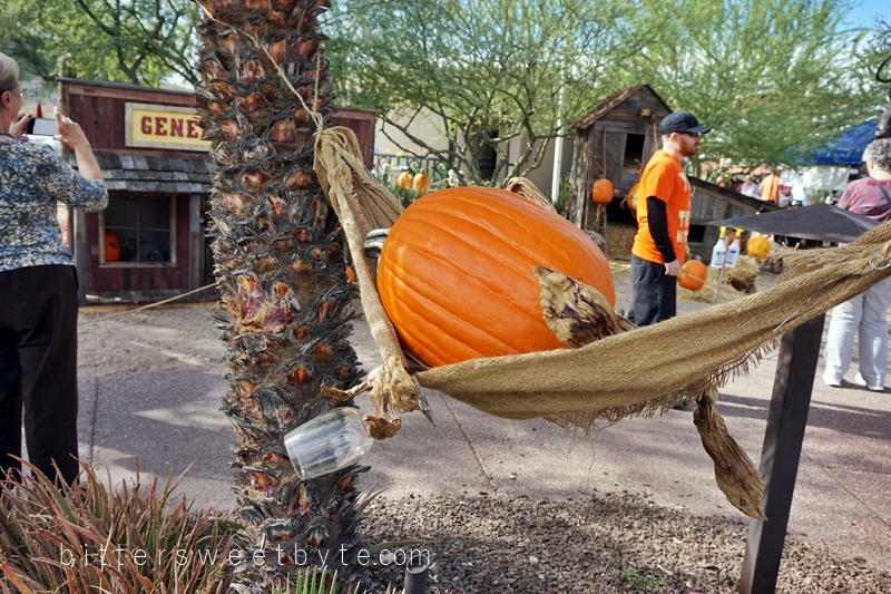carefree-the-enchanted-town-arizona-halloween-edition026