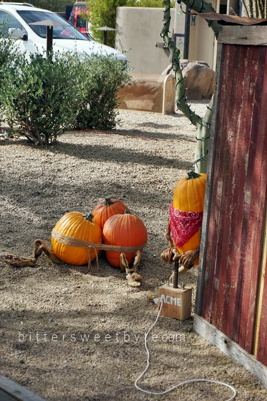 carefree-the-enchanted-town-arizona-halloween-edition035