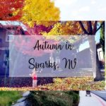 Autumn in Sparks, NV