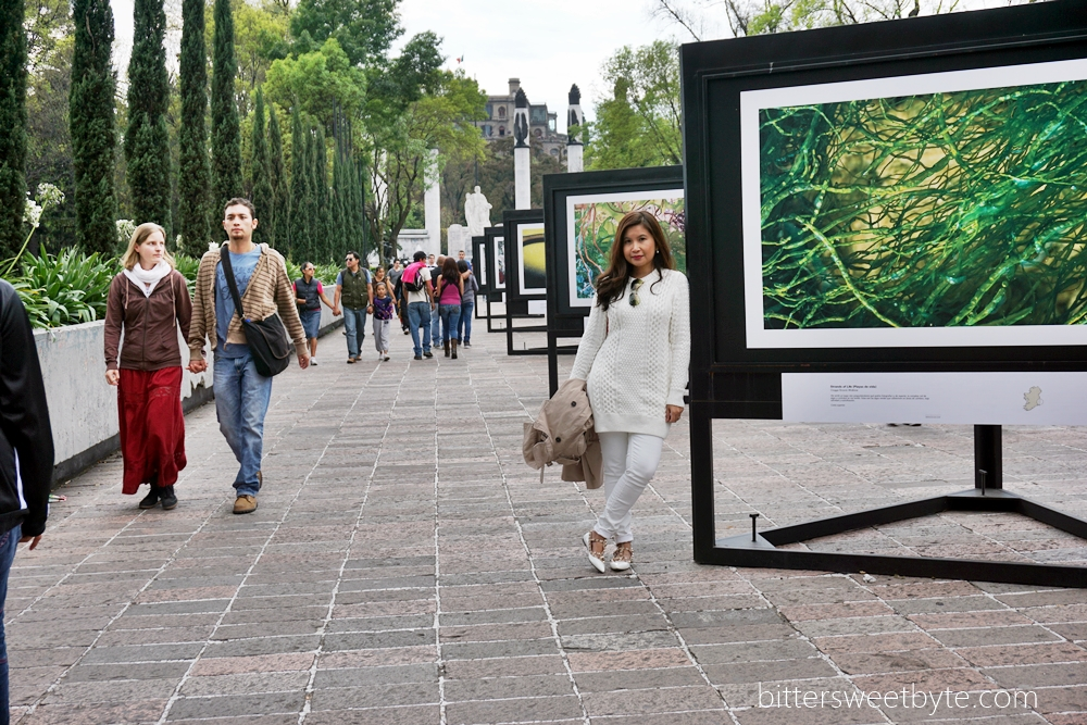 Art exhibition in Chapultepec mexico city